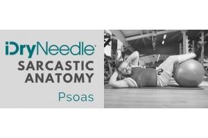 Sarcastic Anatomy - Psoas